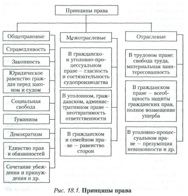 Шпаргалка и принципы тгп понятие права классификация по
