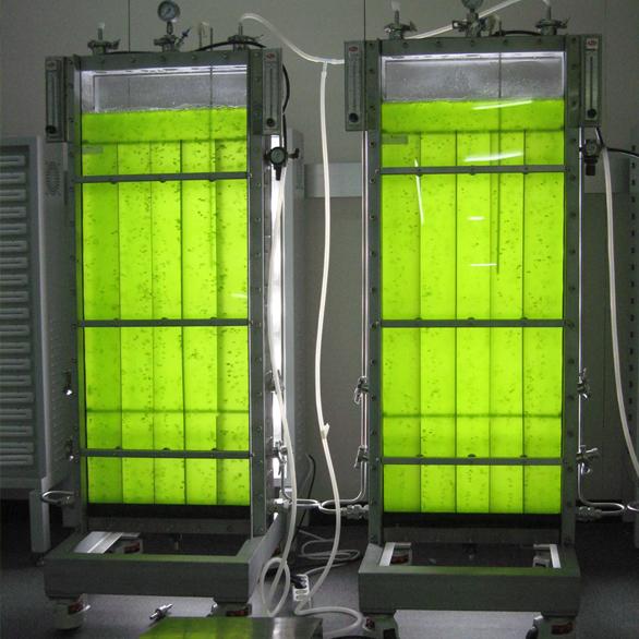 Реакторы для выращивания водорослей 85